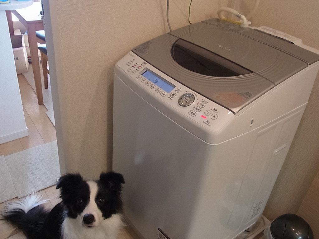 東芝の洗濯機 ZABOON(AW-80SVM)が故障!Eb3とエラー表示