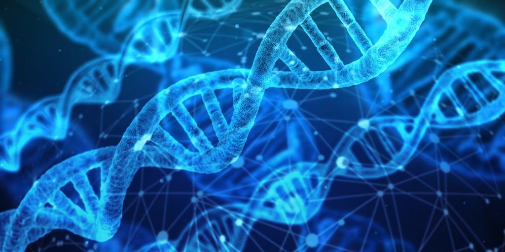 遺伝子のタイプでダイエットの効果が変わる